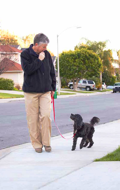 Kate Abbott training dogs in Carlsbad, Vista, and Oceanside. Professional dog obedience training can be fun.